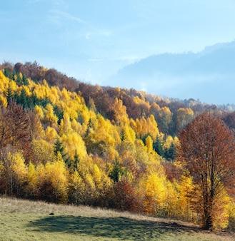 Осенний туманный вид на горы с желтой листвой березы на склоне.