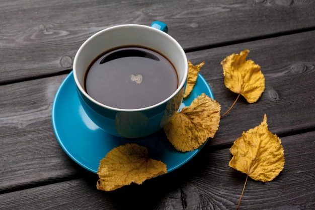 Autumn morning composition. blue coffee cup