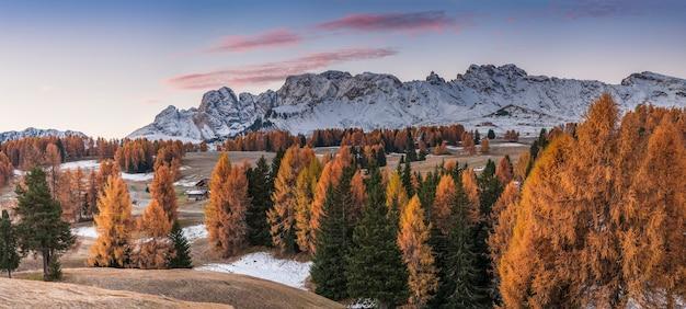 Осеннее утро в горах, пейзаж со снежными вершинами и яркими деревьями