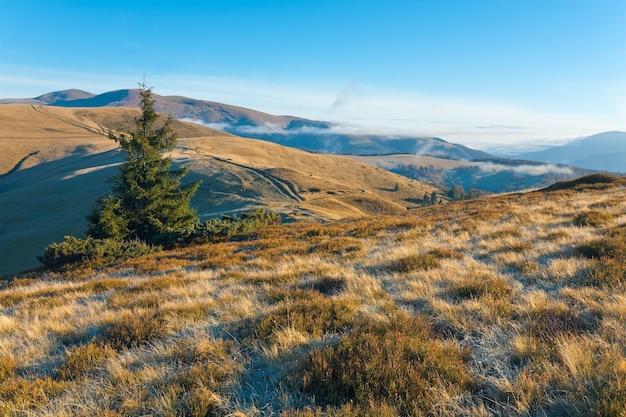 田舎道(カルパティア山脈、ウクライナ)と秋の朝の山の景色。