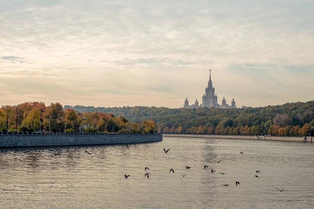 참새 언덕의 가을 아침 철새가 모스크바 강을 날아갑니다.