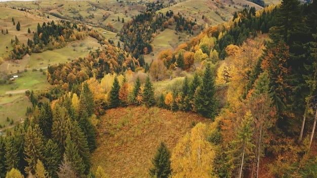 秋の山林空中太陽誰も自然景観田舎道と村の田園地帯