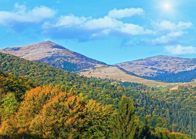 Осенний горный лесхоз, заросший холмом, вид (украина, карпаты)