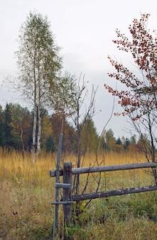 Осенний горный холм с березой и ломкой деревянного забора впереди
