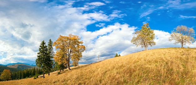 Осенний горный холм с разноцветными деревьями (карпаты, украина). изображение сшивается четырьмя кадрами.