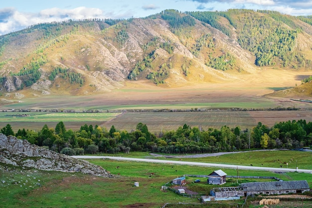 畜産農場のある秋の山の風景ロシアの山アルタイ