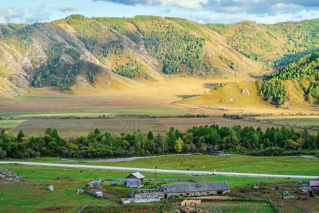 畜産農場ロシア山アルタイ村bichiktuboomと秋の山の風景