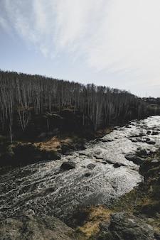 Autumn mountain river stream landscape.