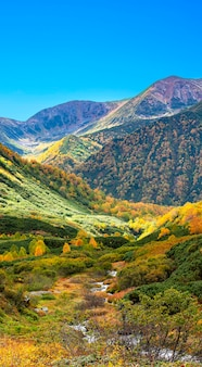The autumn in the mountains. beautiful autumn view of kamchatka peninsula