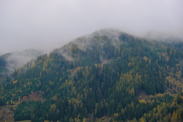 Autumn mountains in the fog background. autumn mountain landscape. green and yellow trees pattern in the fog. mountain nature background.