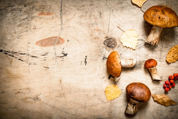 Autumn mushrooms with maple leaves. on a wooden table.