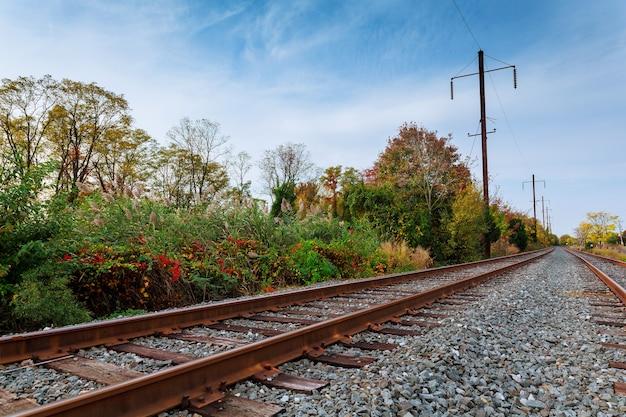 Осенняя природа. облачно вид на природный ландшафт.