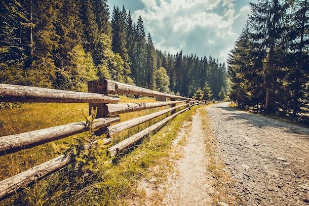 가 자연 풍경입니다. 소나무 숲에 나무 울타리가 있는 빈 도로. carpathian 산, 우크라이나에서 트레킹. 자연 풍경입니다. 여행 배경입니다. 빈티지 토닝 필터.