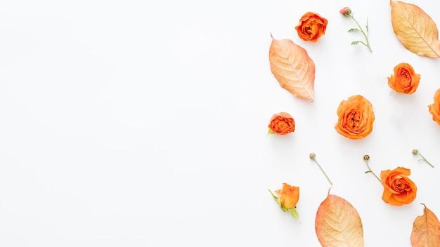 Тема осенней природы красные листья и открытые оранжевые бутоны роз, разбросанные по белой поверхности