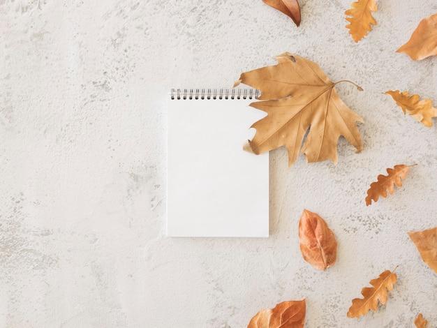 秋のノート