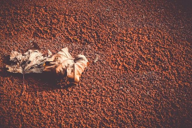 素朴な赤い土の地面の背景に茶色の乾燥した葉の秋