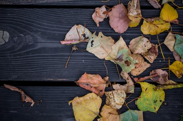 美しい木製のテーブルの秋