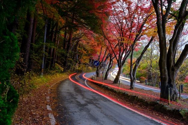 秋の道の秋と秋の季節の黄赤オレンジ緑のカエデの葉季節の移り変わりの道の道で両側の木々が色鮮やかになり、日本のヘッドライトカー、長時間の露出が撮影されました