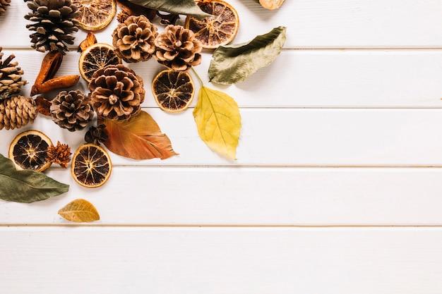Autumn organic composition on white background