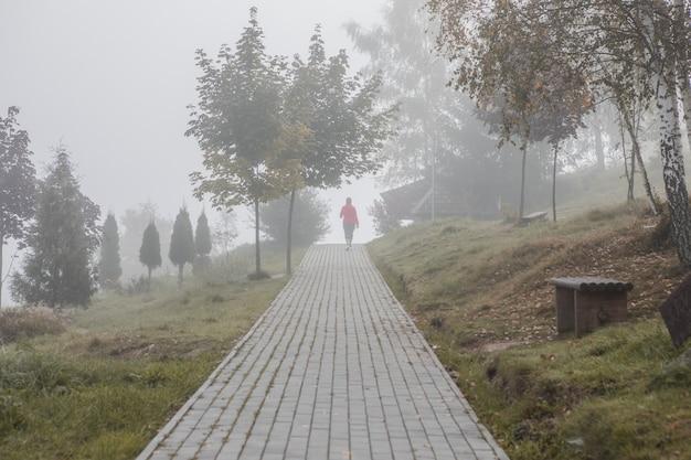 가을 야외 활동적인 라이프 스타일. 자연 경로에서 도시 공원 훈련 심장에서 뛰는 스포츠 은퇴한 여성에 적합합니다. 노란 잎사귀에서 야외에서 운동하는 행복한 사람.