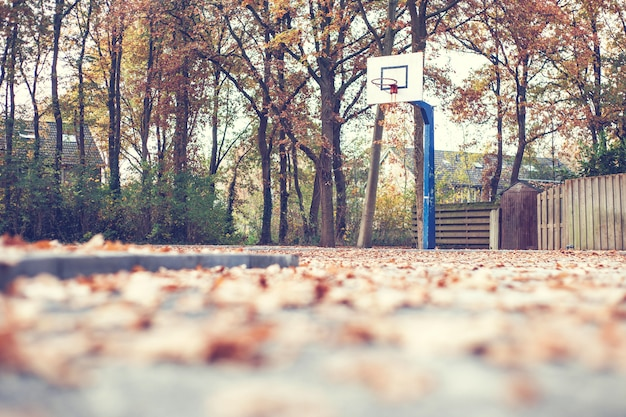 Autumn in a park with basketball court