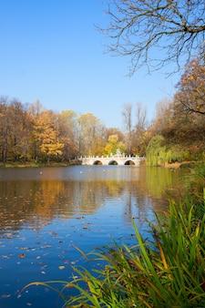 Осенний парк с деревьями над голубыми водами пруда, лазенки, варшава, польша