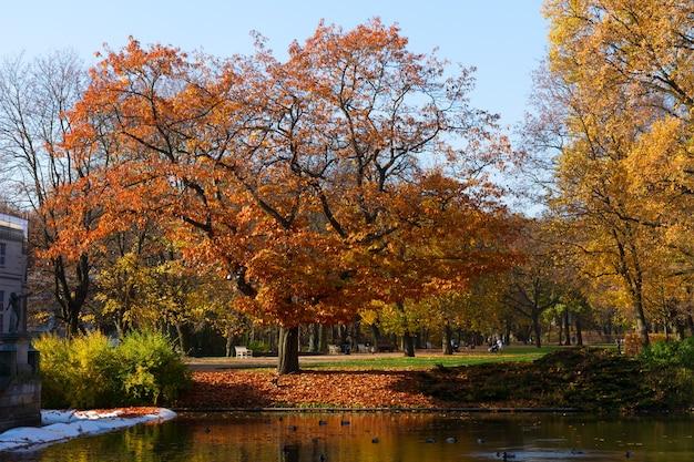 Осенний парк с деревьями над голубыми водами пруда