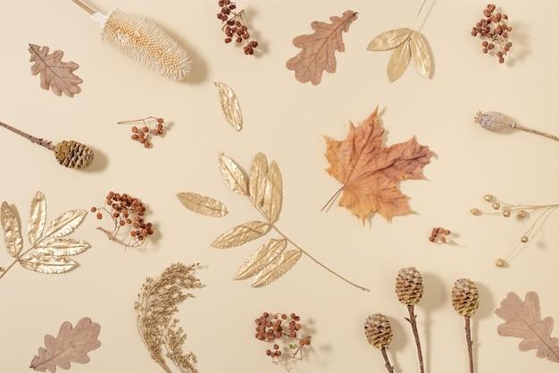 노란색과 황금빛 가을 가을 패턴은 중립 베이지 색 표면에 자연 건조 딸기 양귀비 콘 잎