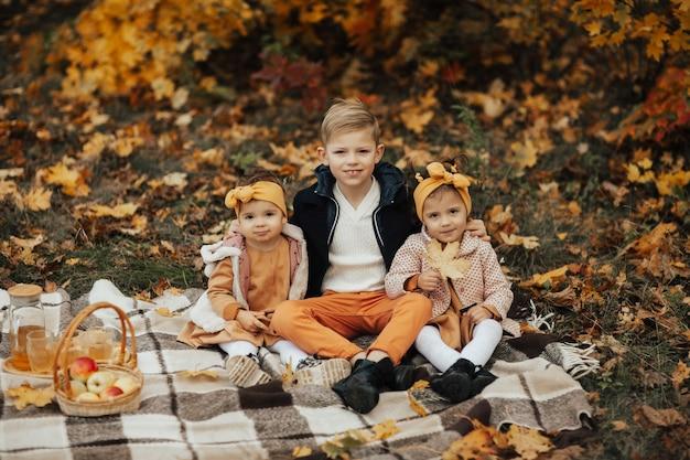 公園での秋のピクニック。格子縞の上に座っている子供たち、バスケットのリンゴ、フレッシュジュース。