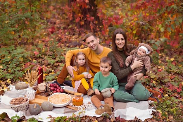 Autumn picnic with pie, pumpkin, tea