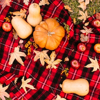 Autumn picnic with pumpkins
