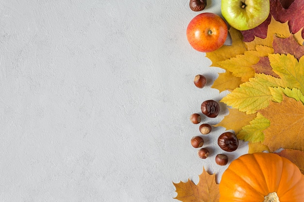 Autumn picture with fall harvest pumpkin apple on concrete gray background flat lay with copy space