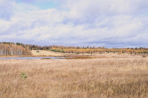 Осенний равнинный пейзаж. падение низкое небо с облаками, деревья с желтыми падающими листьями, пруд и поле с засохшей травой