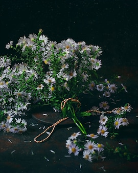 Autumn plants asters (aster) in a vintage vase. dark photo