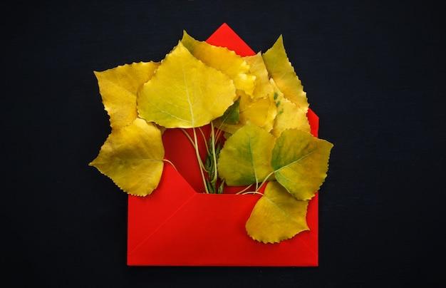 Autumn poplar leaves in red envelope