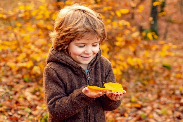 Autumn portrait of cute little boy happy kids playing and dreams outdoors in autumn