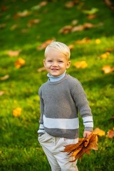 Autumn portrait of cute little caucasian child boy.