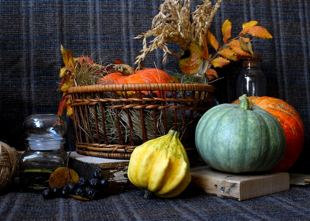 Autumn pumpkin rustic