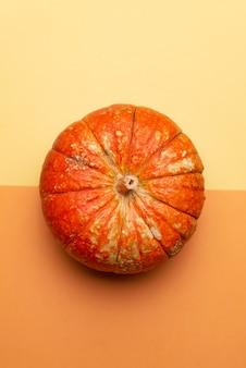 秋のカボチャ
