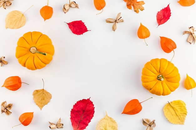 Autumn pumpkins, dried orange flowers and leaves