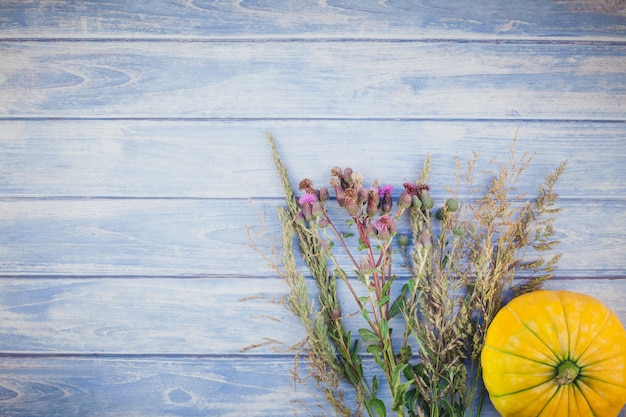 Autumn pumpkins and dry flowers