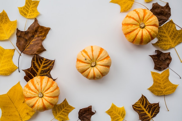 Autumn pumpkins and fall leaves on white