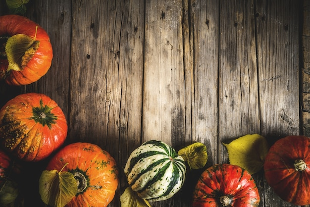 テーブルに秋のカボチャ