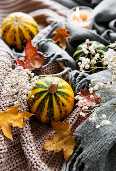 Autumn pumpkins, knitted scarf, maple leaves and candle on a table