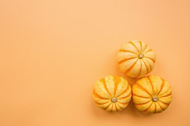Autumn pumpkins on pastel orange background
