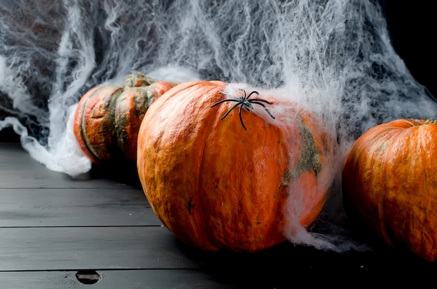 Autumn pumpkins, web and spider in black