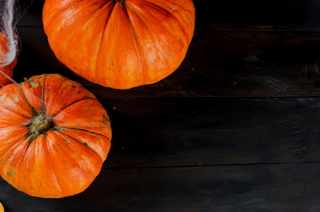 Autumn pumpkins, web and spider in black