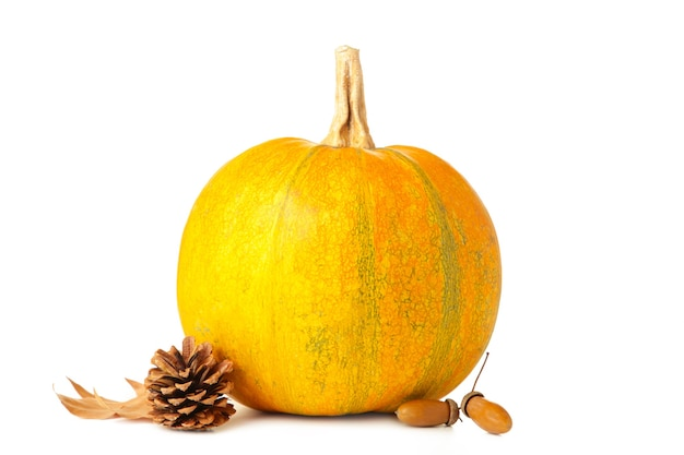 Autumn pumpkins with autumn harvest isolated on white background. top view