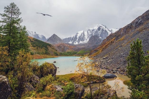 曇り空の下の大きな山から高原の谷の小川と美しい浅い山の湖と秋の雨の高山の風景。アルタイのアッパーシャブリン湖。