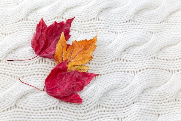 白いニットのセーターに秋の赤と黄色の葉。閉じる。寒い季節の心地よさと暖かさ。